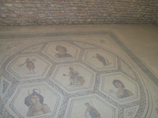 Floor Tiles In Roman Villa Picture Of El Jem Museum El Jem