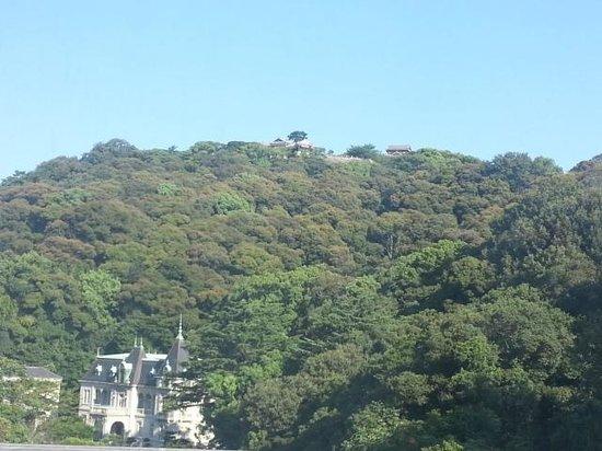 Matsuyama Tokyu REI Hotel: Matsuyama Castle from my room