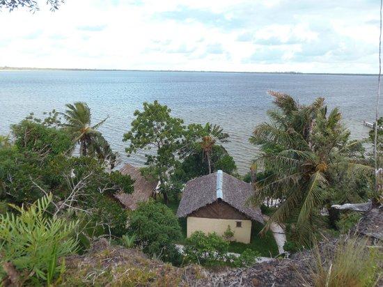 Bushhouse: La vue exceptionnel