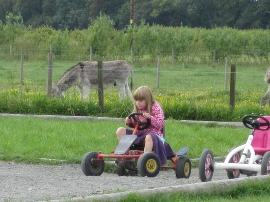Briarlands Farm: granddaughter on cart