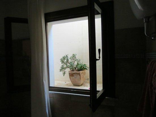 B&B La Luna Sulla Duna: finestra che prende luce dall'alto