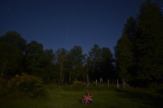 Cedarwood B&B: Starry Night