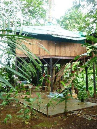 Posada Andrea Cristina: cabane dans les arbres