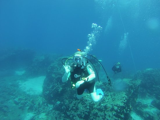 Octopus Diving Center: A great dive!