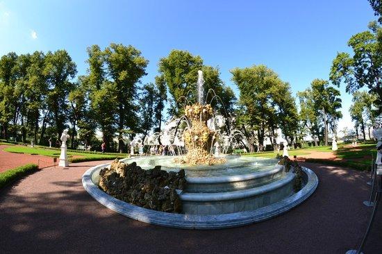 Russian Tour Guide, LLC- Day Tours: Summer Gardens