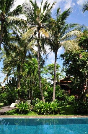 """Maison Polanka: Une vue du jardin sue la """"Maison"""""""