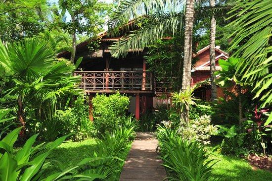 Maison Polanka: La maison vue du jardin