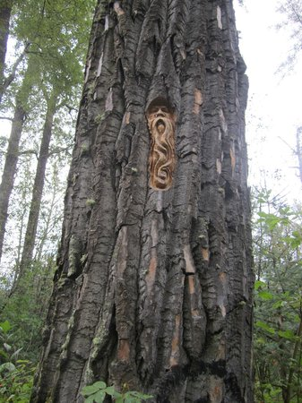 Cottonwood Island Nature Park: tree carvings by elmer guntherson