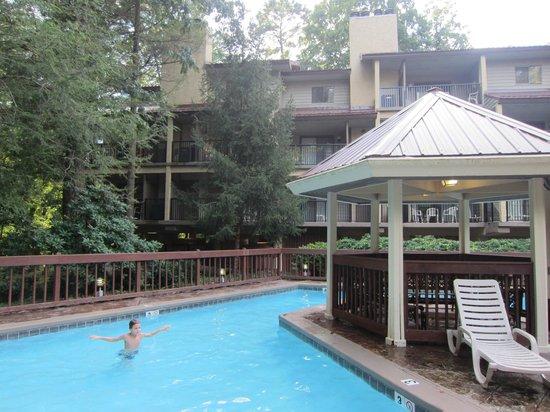 Tree Tops Resort: Pool outside building 2