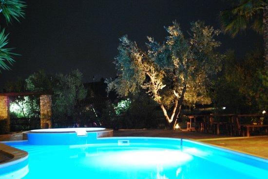 Villa le Macine: Piscina