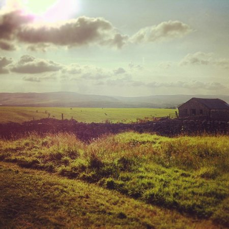 East Underhurth Farm: The view from my tent