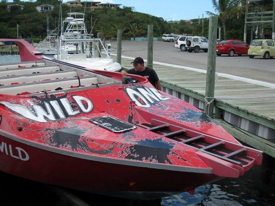 Wild One Jet Boat Tours: We arrived early for the boat ride