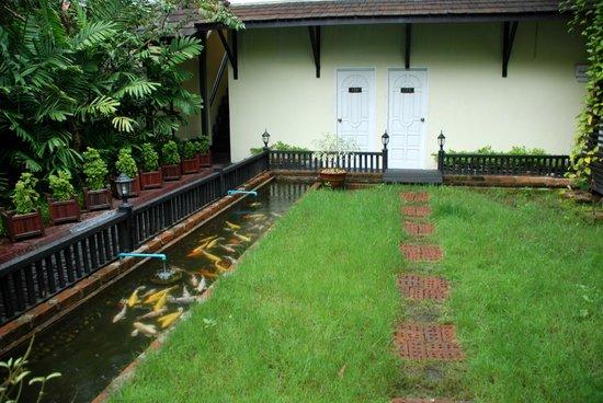 The Garden - Picture Of Garden Home B&B, Yangon (Rangoon