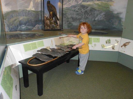 Kendal Museum: Slate music