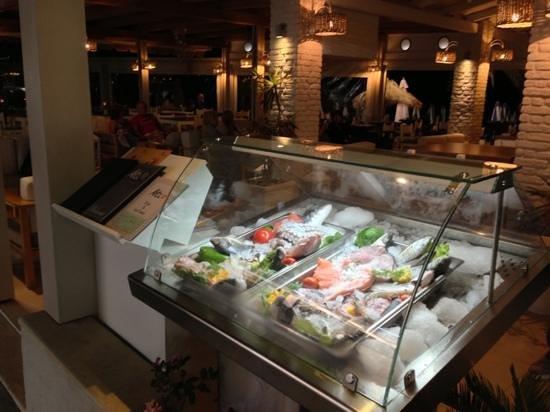 Akti Bar Restaurant : fresh fish