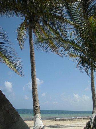 Hotel Castillo: Strandbereich