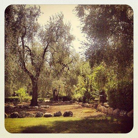 Residence Valle Verde: Area relax