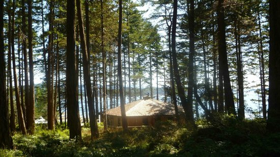 Hollyhock Lifelong Learning Centre: Raven House & the sea through the trees