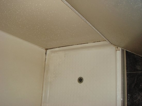 Travellers International Hotel: Mouldy shower cubical with gaps down the sides