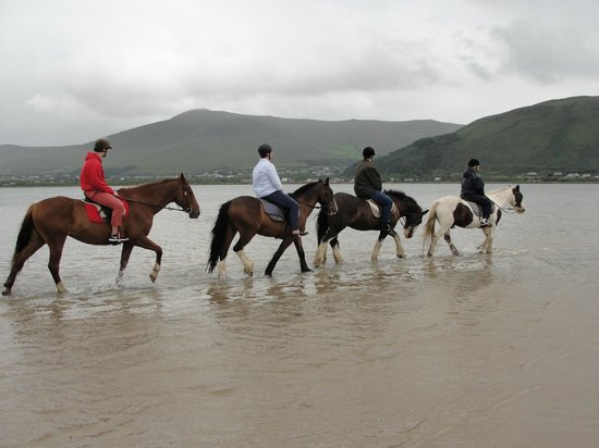 Glenbeigh, Irlanda: Regular beach trek with the family