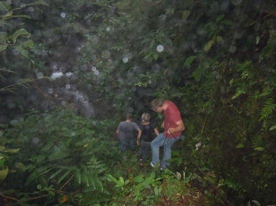 Vista Verde Lodge: On site hiking trail