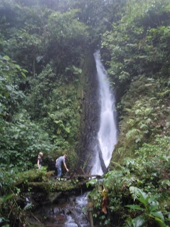 Vista Verde Lodge: on site waterfall, 0 justification from actual beaty