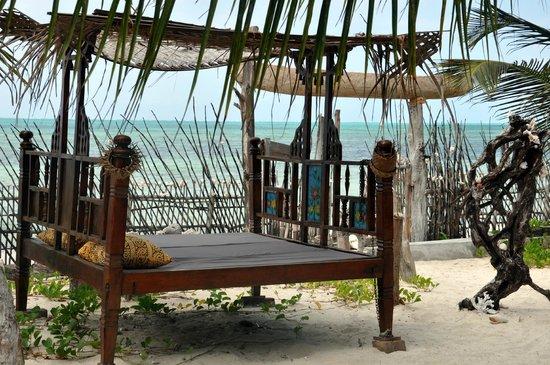 Mango Beach House: Relax