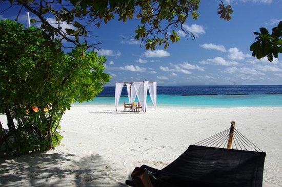 Coco Bodu Hithi: Breeze beach