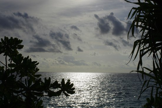 Coco Bodu Hithi: View from sand villa