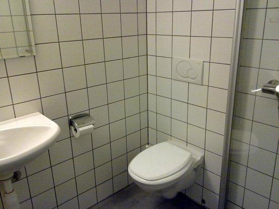 Sanden Pensjonat: toilet