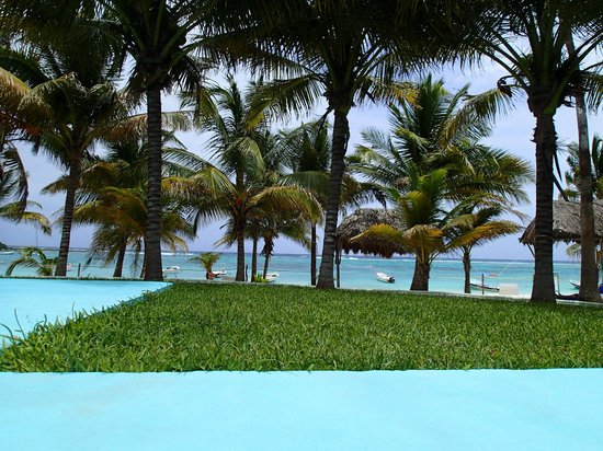 Hotel Akumal Caribe: la alberca es super fresca y muy honda