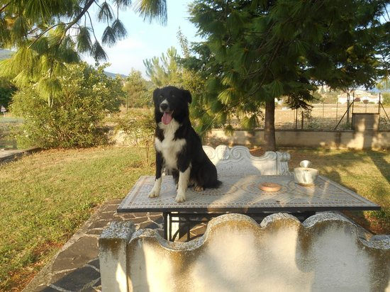 Terra Dei Santi Country House : Chicca