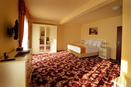 Spa Hotel Vita: Hotel room