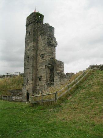 Tutbury Castle: Tower