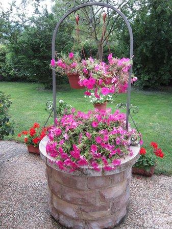 Residenza di Campagna: in giardino