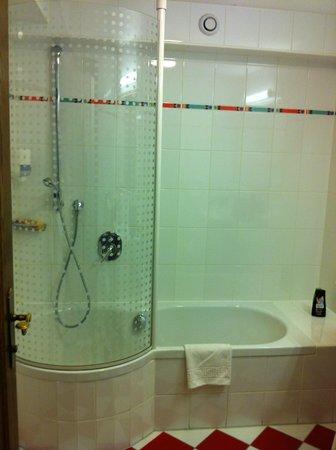 Alpenbad Hotel Hohenhaus: bathroom