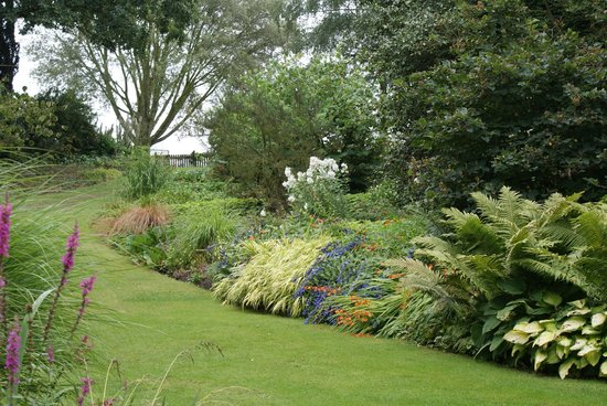 The Beth Chatto Gardens: Beauty and Tranquility
