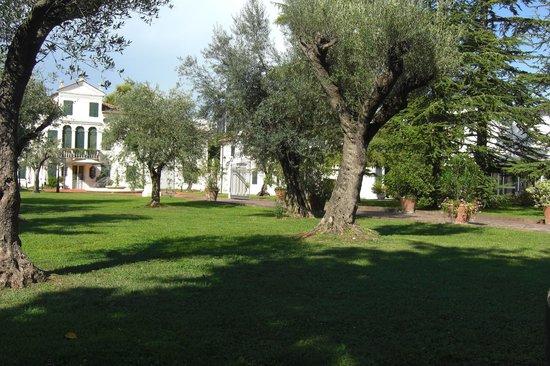 Park Hotel Villa Fiorita: Panoramica del viale di accesso