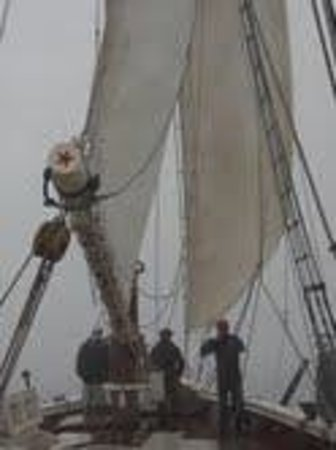 Schooner Stephen Taber Day Cruises : One day was foggy- very eerie and cool to experience
