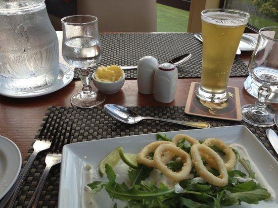 Westport Woods Hotel: Great starter - calamari rings