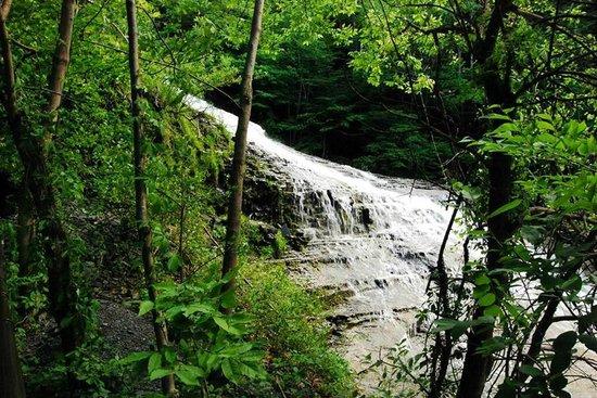 奶昔瀑布州立公园