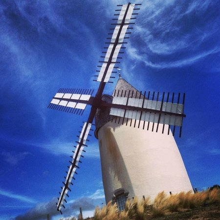 Le Clos des Pins : windmill nearby