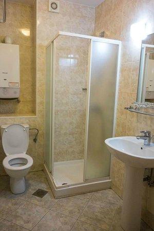 Hotel Bohinj: Bathroom