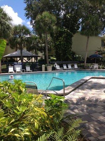 High Point World Resort: pool
