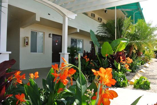Creekside Inn Islamorada: Garden