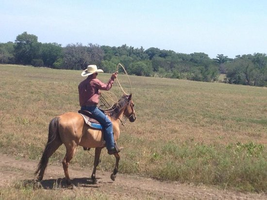Twin Elm Guest Ranch : Whilst out on a trail ride. Dale one of the wranglers demonstrating roping.