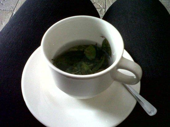 Antawasi Hotel: chá de coca