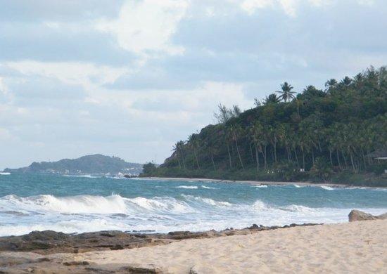 Tibau do Sul Beach : Vista da praia ao lado da praia de Tibau do Sul