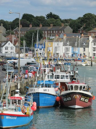 The Alendale Guest House: Weymouth Harbour