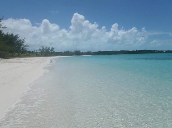 Coral Gardens : Hooper's Bay